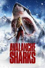 Watch Avalanche Sharks Niter